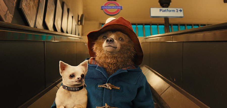 Paddington - Friendly Autism Screening